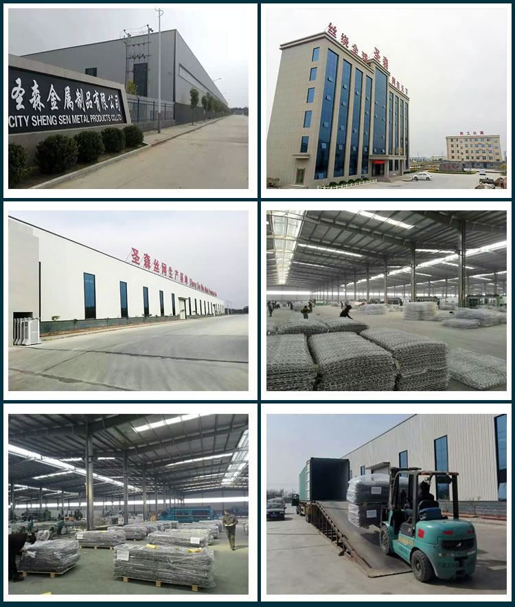 Hebei Shengsen Metal Products Co.Ltd