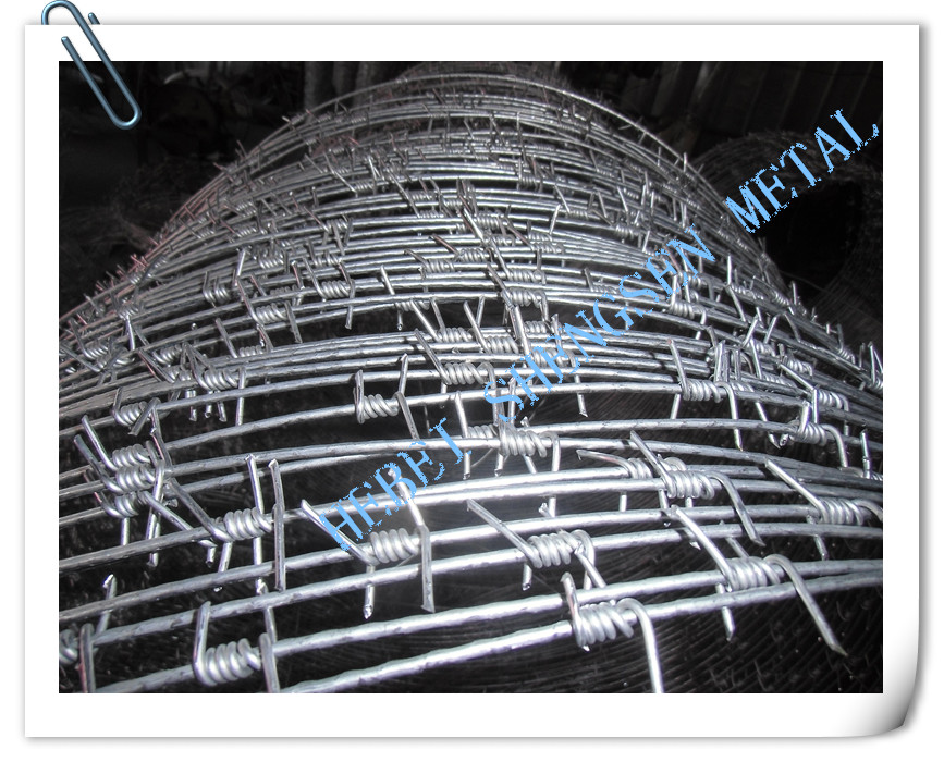 New type of barbed wire mesh with clips
