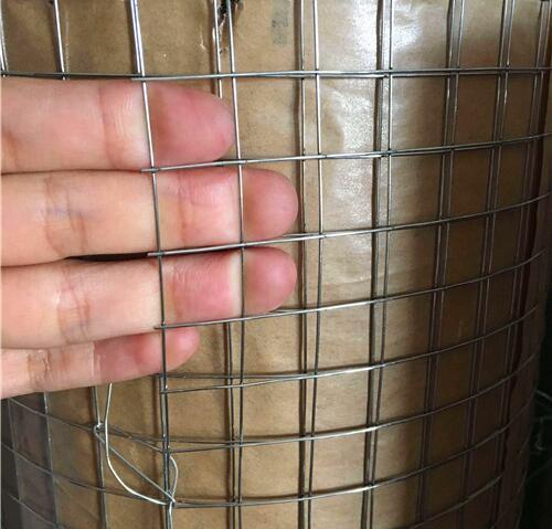 Galvanized Welded Wire