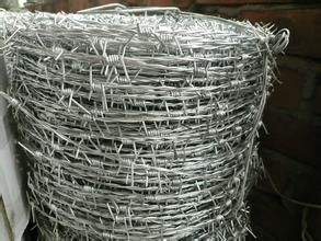 Sharp Barbed Wire