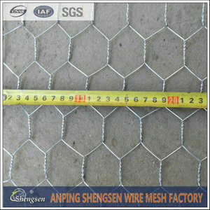 300Chicken wire mesh (10).jpg