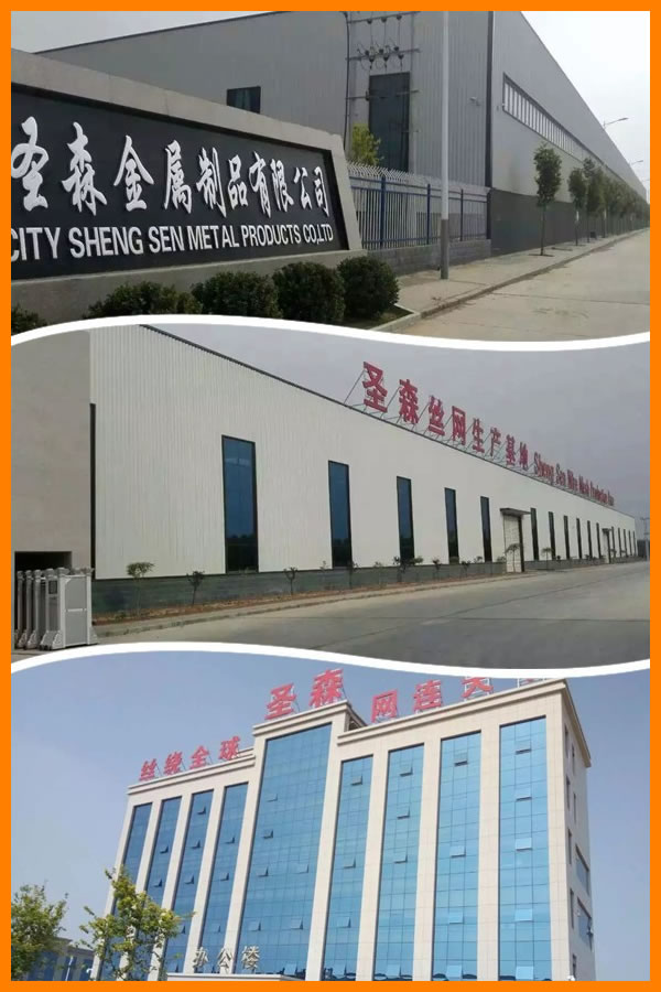 About Hebei shengsen